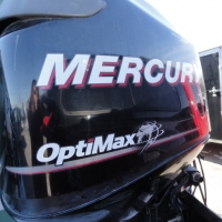 Image of 2007 Mercury 115hp Opti