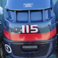 Image of 2002 Evinrude 115hp